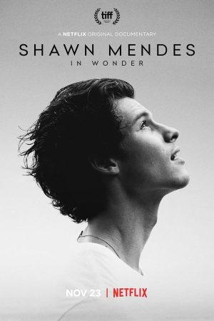 Shawn Mendes: In Wonder 2020 Subtitle